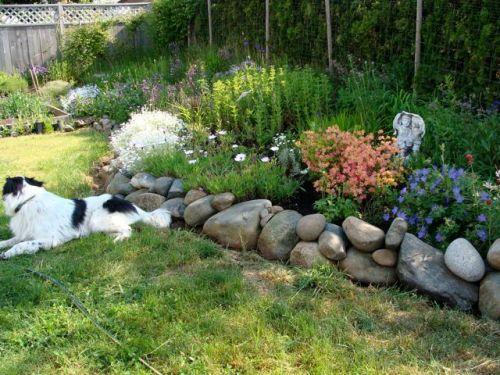 june 1 garden2